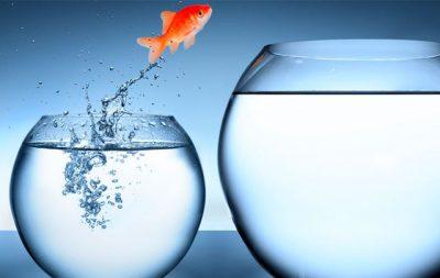 CAMBIAMENTO/ MIGLIORAMENTO Migliorare i risultati di gestione in situazioni di incertezza